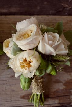 Garden Roses, Roses, Camellia Foliage, Millet