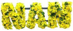 Loose flowered NAN