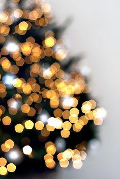 Fotoidee: Weihnachtsbaum // Foto von Janie Nabbe