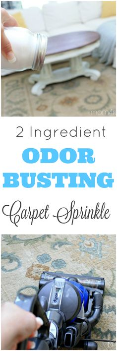 Got pets? You need this DIY 2 Ingredient Pet Odor Busting Carpet Sprinkle Recipe! Just make it, sprinkle it and vacuum the odors away. This carpet sprinkle will leave your home smelling fresh and clean!