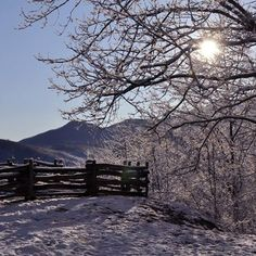 A beautiful snowy day in the Smoky Mountains
