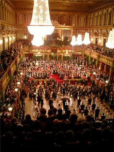 Because balls in Vienna do not usually start until later in the evening (9 pm), it is customary to have dinner several hours before the ball commences.  Otherwise, it can be somewhat more challenging to dance the Viennese Waltz immediately after a large meal.