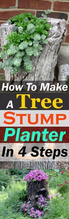 to Make a Tree Stump Planter in 4 Easy Steps Learn how to make a tree stump planter and make use of an old stump that you want to get rid of.Learn how to make a tree stump planter and make use of an old stump that you want to get rid of. Diy Garden, Garden Trees, Garden Crafts, Garden Planters, Succulents Garden, Lawn And Garden, Garden Projects, Garden Art, Garden Design