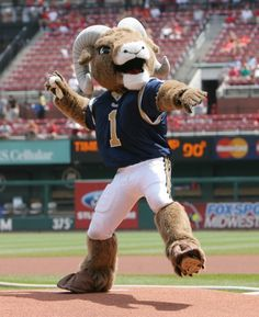 St.Louis Rams Mascot   Created by Street Characters Inc
