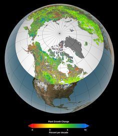 Amplified Greenhouse Effect Shifts North's Growing Seasons    Of the 10 million square miles (26 million square kilometers) of northern vegetated lands, 34 to 41 percent showed increases in plant growth (green and blue), 3 to 5 percent showed decreases in plant growth (orange and red), and 51 to 62 percent showed no changes (yellow) over the past 30 years.