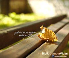 REDE MISSIONÁRIA: MI PASTOR (SALMO 23:1)