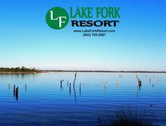 Plan your fishing trip to Lake Fork and stay at Lake Fork Resort Lake Fork, Free Gas, Rv Parks, Swimming Pools, Fishing, Boat, How To Plan, Swiming Pool, Pools