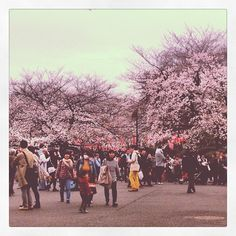Exhibition of El Greco in Ueno. There are sooooo many people for seeing SAKURA!!!