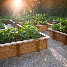 raised garden beds with built in seating. easy on the back and knees!
