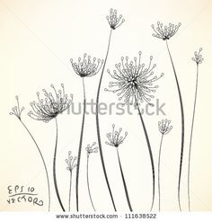Floral Elements for design, EPS10 Vector background by plearn, via ShutterStock