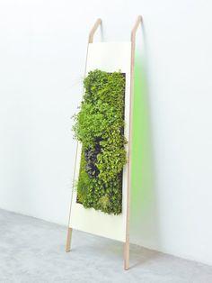 Horizon 180 est une plaque de Dacryl sur un support en bois dans lequel est intégré un tapis de terreau qui favorise la culture verticale de ce petit bout de jardin intérieur. Adossé à un mur, Horizon 180 devient un élégant tableau végétal.