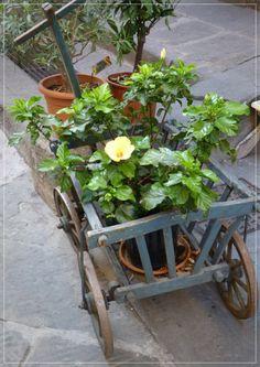 Umbrian Vintage garden – Mabel & Rose – Vintage garden and country living