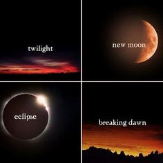 Twilight, New Moon, Eclipse, and Breaking Dawn. Four books of Twilight Film Twilight, Twilight Quotes, Twilight Saga Series, Twilight Edward, Twilight New Moon, Twilight Pictures, Edward Bella, Edward Cullen, Twilight Stars