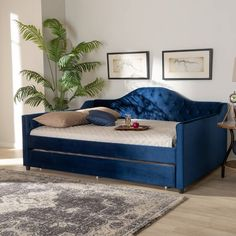 Baxton Studio Perry Modern and Contemporary Royal Blue Velvet Fabric Upholstered and Button Tufted Queen Size Daybed - Blue-Daybed-QSmooth curves and sumptuous velvet upholstery give the Perry daybed a regal look. This versatile piece features Daybed Bedding, Trundle Mattress, Upholstered Daybed, Daybed With Trundle, Daybed Room, Queen Daybed, Platform Daybed, Contemporary Daybeds, Modern Contemporary