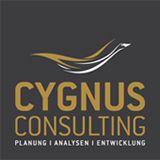 Iteration als Grundprinzip der meisten derzeitigen Internetunternehmensphilosophien | Cygnus Consulting