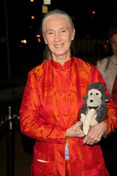 Jane Goodall: Primate Expert Weighs In On Cincinnati Zoo Gorilla Shooting — It's 'Devastating'