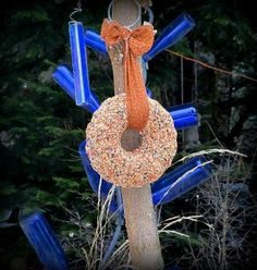 Kirk Willis's seed wreath bird feeder