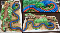 Great snake cake with M&Ms