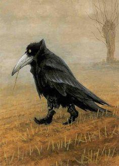 crow by rudi hurlzmeier
