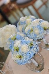 roses and blue hydrangea