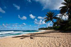 North Shore, Oahu, Hawaii - one of my favorite places! Hawaii Honeymoon, Hawaii Vacation, Oahu Hawaii, Vacation Places, Hawaii Travel, Dream Vacations, Hawaii Life, Vacation Destinations, Oahu North Shore