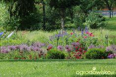 Pszczelarnia - strona 1369 - Forum ogrodnicze - Ogrodowisko