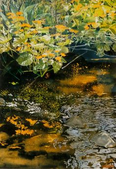marsh marigolds overhanging jessie's stream x micheal zarowsky watercolour on arches paper private collection Marsh Marigold, Arches Paper, Ponds, Landscape Art, Watercolour, Trees, Colours, Paintings, Abstract