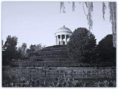 Loggetta Parco Querini - VI