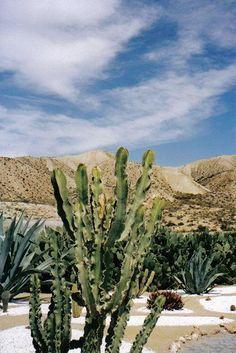 Spanish desert - Tabernas, Almeria by Craig Grindley