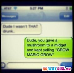 -Dude I wasn't that drunk - Dude, you gave a mushroom to a midget and kept yelling *GROW MARIO GROW*