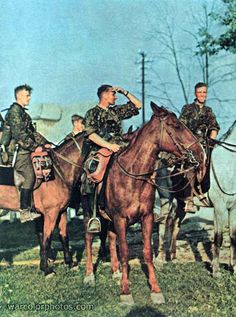 Most people don't realize that there was still a large percentage of horse cavalry during WWII German Soldiers Ww2, German Army, Cute Country Boys, Ww2 Uniforms, Panzer, Japan, Four Legged, World War Two, Wwii
