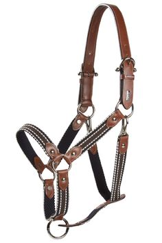 LICOLSPORT Horse Gear, Horse Tack, Leather Halter, Pony Style, Western Tack, Horse Accessories, Equestrian Outfits, Horse Photos, Horse Saddles