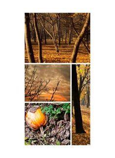 Herbstwaldcollage Motivdruck Papier