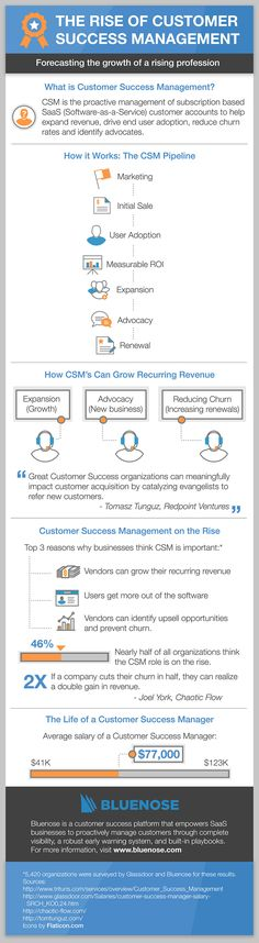 The Rise of Customer Success Management in a SaaS World [Infographic] Social Business, Business Planning, Advertising Techniques, Customer Behaviour, Digital Strategy, Competitor Analysis, Leadership Development, Community Manager, Customer Experience