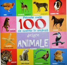 - Primele mele 100 cuvinte in engleza - despre animale - - elefant.ro