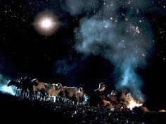 Αποτέλεσμα εικόνας για angels bring the news to the shepherds
