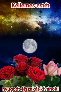 Moon Images, Moon Pictures, Nature Pictures, Beautiful Pictures, Amazing Flowers, Beautiful Roses, Beautiful Moments, Beautiful Places, Night Sights