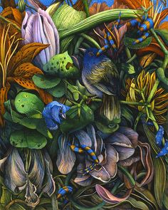 Highly detailed and richly colored paintings of gardens by Canadian artist Judy Garfin.