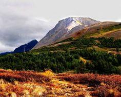 Alaska (80 pieces)