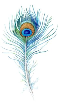 Watercolor Peacock Feather Peacock feather - would make an awesome tattoo. Definitely brighter colors though!