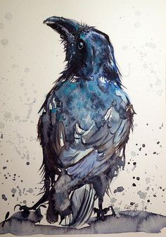 ARTFINDER: Crow by Kovács Anna Brigitta - Original watercolour painting on high quality watercolour paper. I love landscapes, still life, nature and wildlife, lights and shadows, colorful sight. Crow Art, Raven Art, Blue Raven, Crow Or Raven, Raven Wings, Art Aquarelle, Watercolor Bird, Watercolour Painting, Watercolours