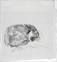 A Cat Curled Up, Sleeping-Édouard Manet