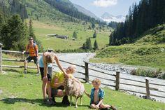 Kirchen, Horses, Travel, Animals, Mountains, Adventure, Vacation, Viajes, Animales