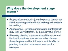Why does the development stage matter?  Propagation method – juvenile plants cannot set seed; mature growth will not make...