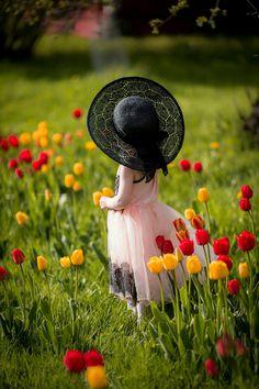 ☆ meadow flowers