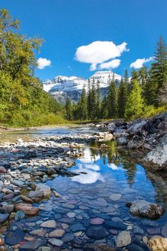 ON SALE - Vibrant Metal Ready to Hang Print of clear mountain stream in Glacier National Park fall c