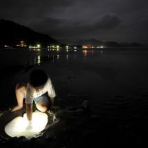 A boy, sand, saltwater and a flashlight.