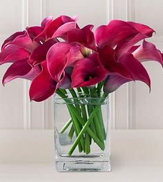 Loving the hot pink mini calla lilies. So simple and pretty!