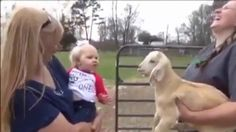 Baby Girl Perfectly Mimics Little Goat https://www.youtube.com/watch?v=he6BO43VkE8&ab_channel=ALIVEMEDIA