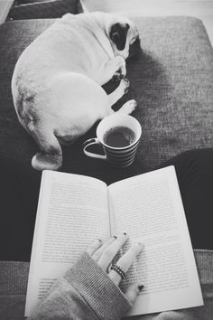 The perfect fall/winter morning.